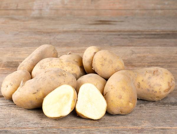 Image of Bio Kartoffeln Agria, ungewaschen, 1kg