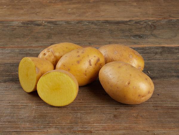 Image of Bio Kartoffeln Agria, gewaschen, 1kg