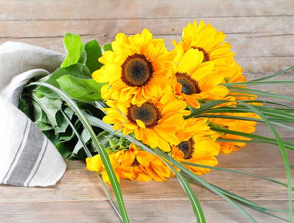 Sonnenblumenstrauss mit Gras von Blumen Gärtnerei Oertig bei Farmy.ch online einkaufen.