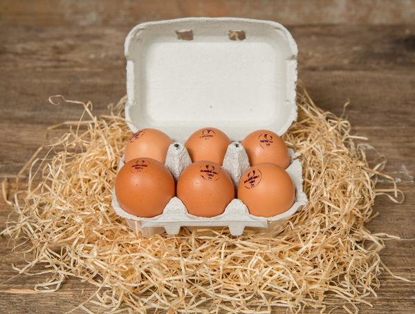 Eier Bio Suisse, 6 Stück von Hof Blum bei Farmy.ch online einkaufen