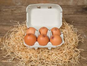 Eier, Bio Suisse, 6 Stück