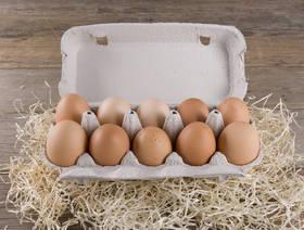 Eier, Demeter, 10 Stück