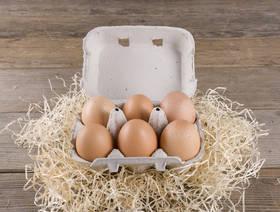 Eier, Demeter, 6 Stück