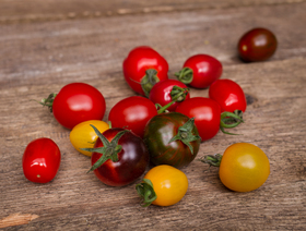 Bio Cherry Tomaten Mix