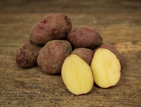 Bio Kartoffeln rot, ungewaschen