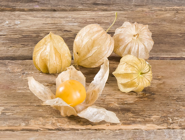 Image of Physalis Max Havelaar, 100g