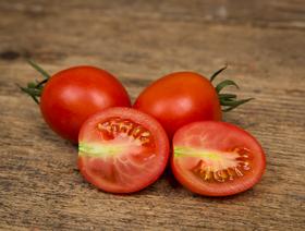 Bio Tomaten Roma