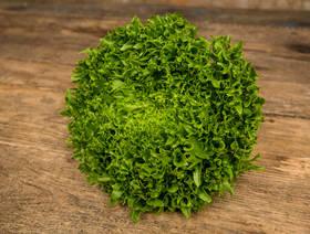Bio Frisée Salanova grün, ca. 200g