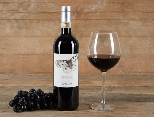 Image of Bio Dolcetto Diano d'Alba DOCG, 75cl, 2020