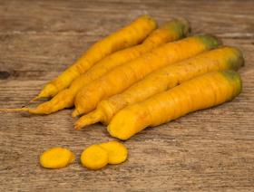 Bio Gelbe Rüebli Yellow Stone