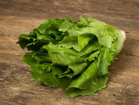 Bio Lattich grün, ca. 400g