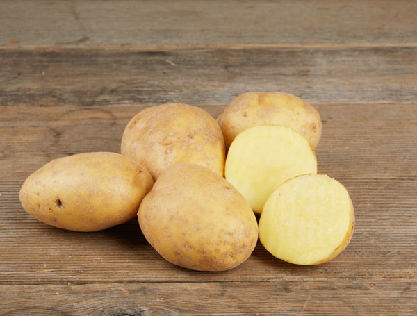 Image of Kartoffeln Agria, gewaschen