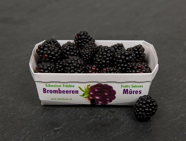 Image of Bio Brombeeren, 250g