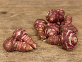 Bio Topinambur rot