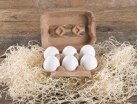 Œufs suisses d'élevage en plein air, 6 pièces