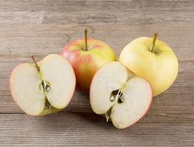 Bio Äpfel Elstar