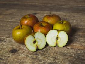 Bio Äpfel Boskoop, kräftig säuerlich