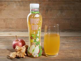 Bio Yootea Ginger Apple, 500ml