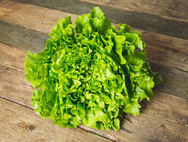 Image of Bio Endivien Salat glatt