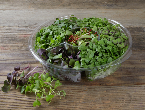 Image of Micro Leaves ´´Chef Kit´´, 100g