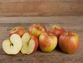 Äpfel Maigold