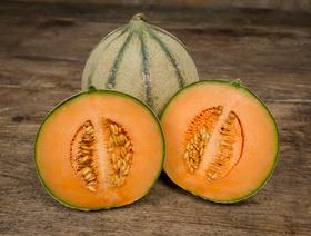 Bio Melone Charentais, ca. 700g