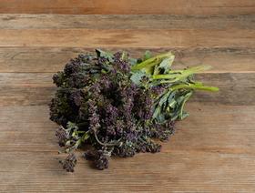 Bio Sprossenbroccoli