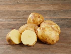 Bio Frühkartoffeln weiss-gelb, gewaschen