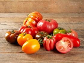 Bio Tomaten mix